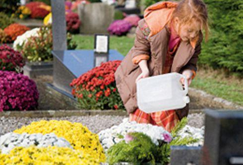 Tipps zur Grabpflege