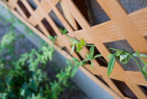 Auf nie mehr Wiedersehen! – Sichtschutz am Balkon