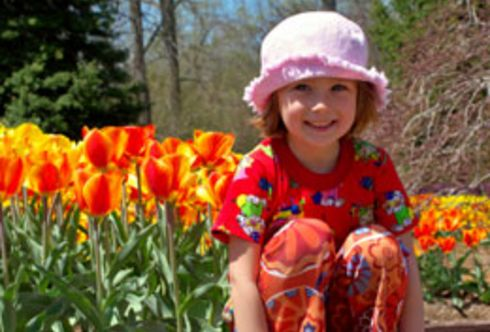 Der Frühling lässt Freude blühen