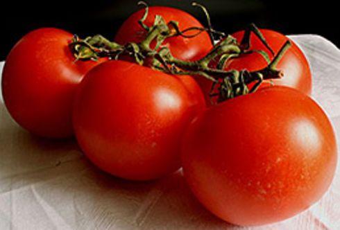 Lust auf Tomaten
