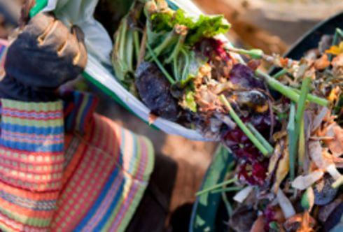 Wertvoller Kompost