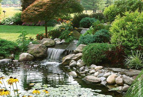 Ab in den Teich