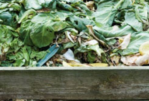 Er duftet - der eigene gesunde Kompost