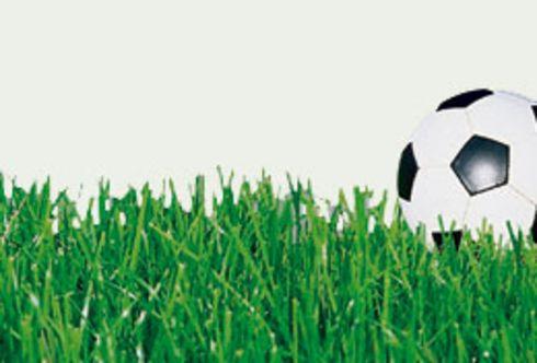 Der grüne Teppich für den Garten - Rasenneuaussaat