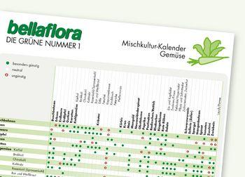 Mischkultur-Kalender Gemüse
