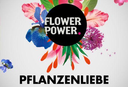 bellaflora listet Pestizide aus