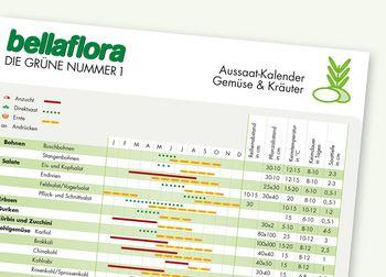 Aussaat-Kalender Gemüse und Kräuter