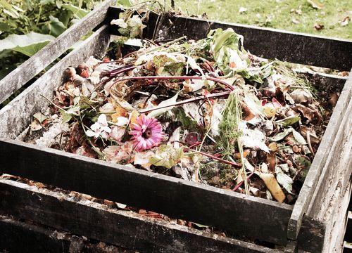 Richtiges Kompostieren in Fohnsdorf