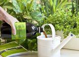 Effektive Mikroorganismen - Kleine Helfer ganz groß!