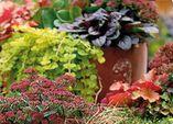 Zauberhafter Herbst – Herbstzauber