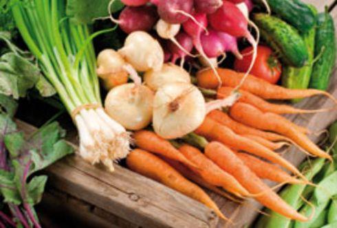 Gemüse haltbar machen - Vitaminbomben für den Winter