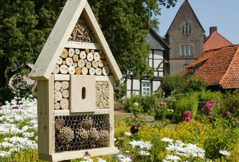 """Hotels für Insekten - die """"braven"""" Insekten"""