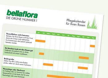 Rasenpflege-Kalender