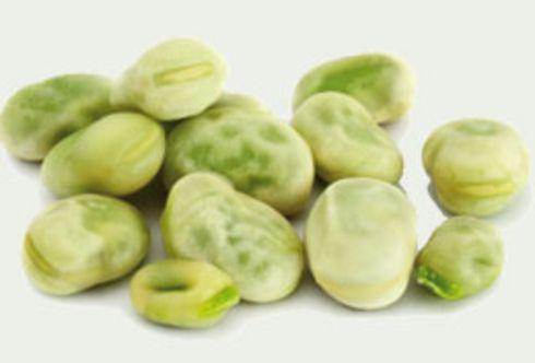 Ab in die Erde: Saatgut von dicken Bohnen und Spinat