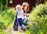 Wassersparen - 6 Tipps für den privaten Garten
