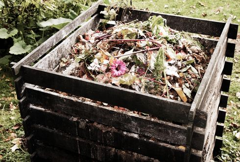 Des Gärtners schwarzes Gold: Der Kompost